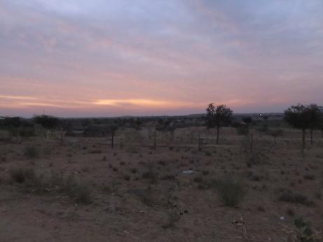 Dawn in the Thar Desert