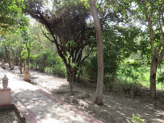 Gardens of the Bagh