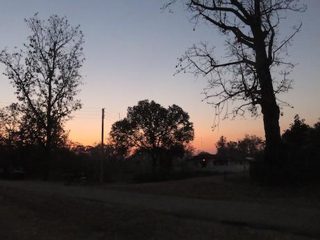Dawn at Kanha National Park