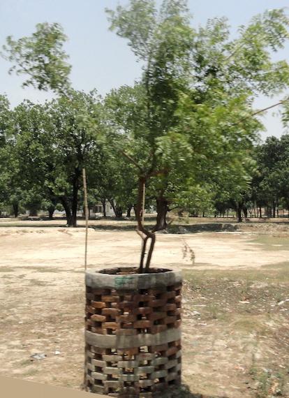 Brick tree protector