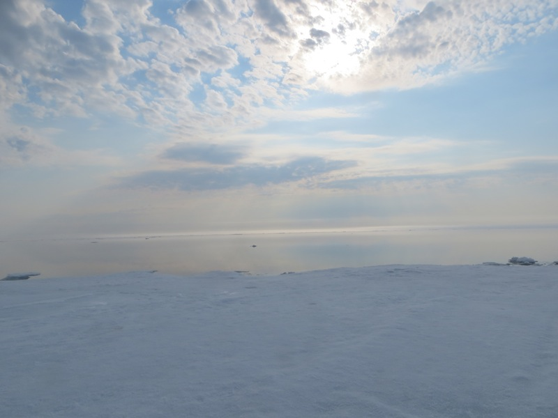 At the edge of the floe