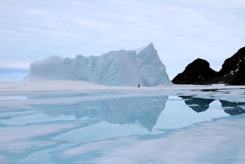 Iceberg embedded in ice floe