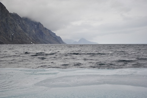From the drifting floe